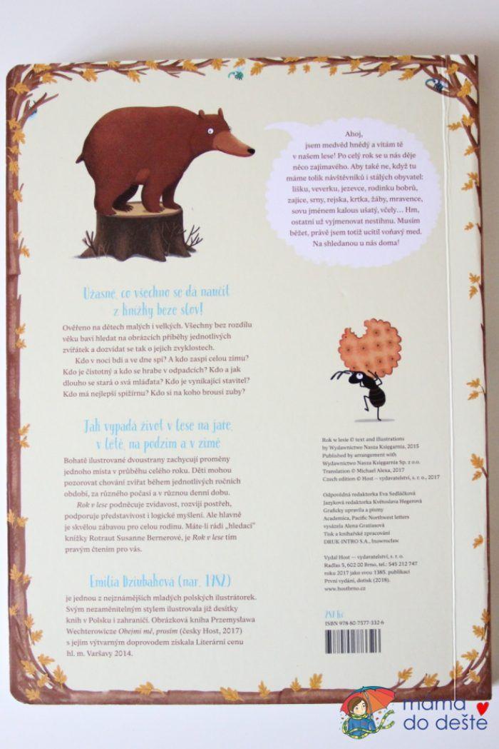 Rok v lese: Zadní obálka knihy.