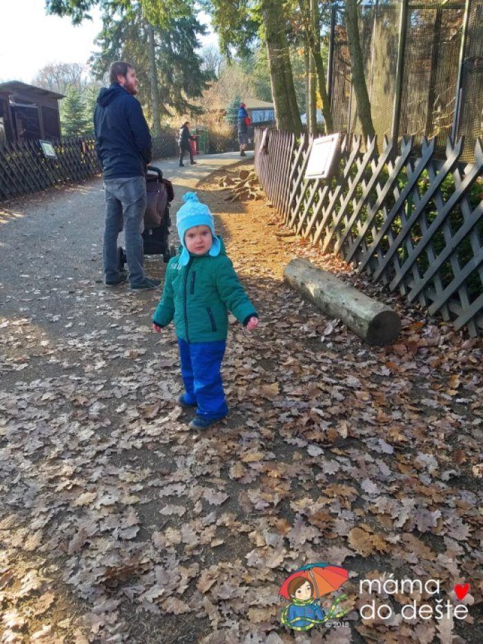ZOO v Chuchelském háji: Cesta mezi zvířaty je přístupná i pro kočárky.