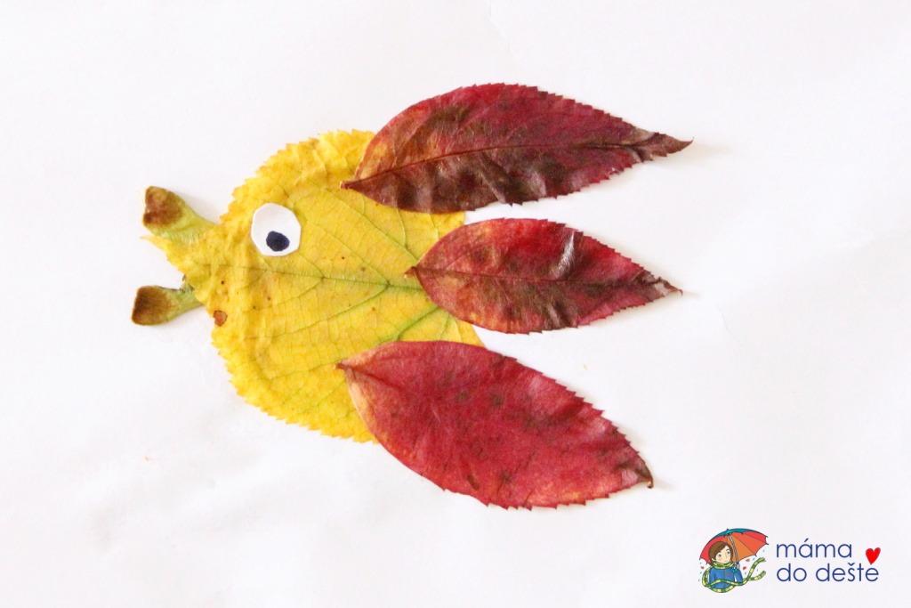 Ryba z listí