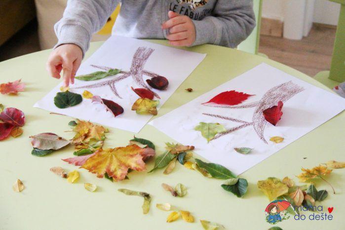 Podzimní tvoření: Lepíme stromy a obrázky z listí