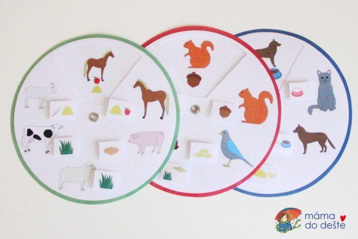 Kruhový diagram CO jí zvířátka