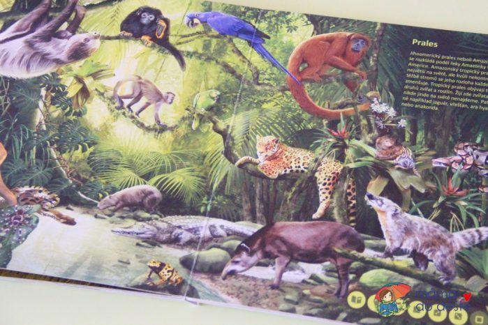 Recenze: Svět zvířat (Kouzelné čtení)