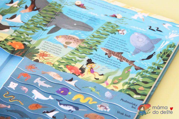 Recenze knihy Oceán (Zpátky v čase)