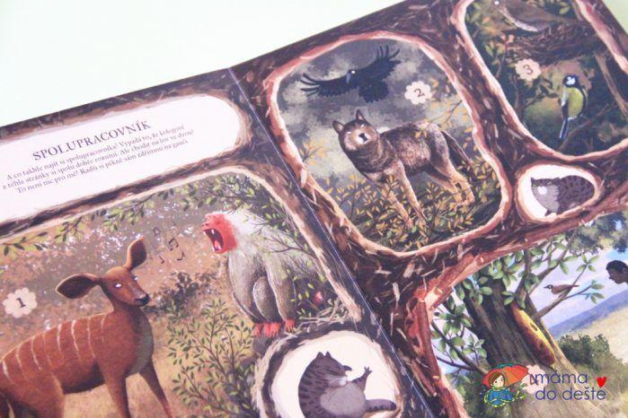 Recenze knihy Neobyčejná přátelství v přírodě (Emilia Drzubiak)
