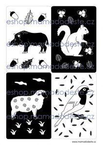 ESHOP Kontrastní kartičky KRESBY 24