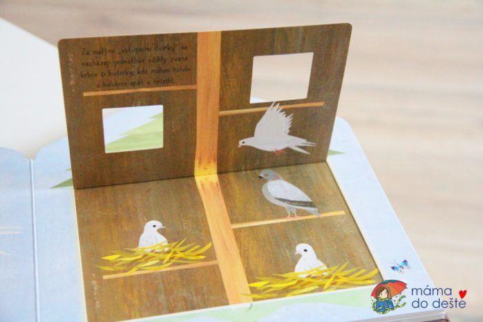 Recenze knihy Ptačí budka