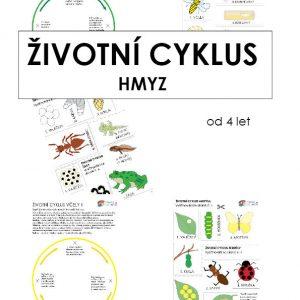 Pracovní sešit a karty Životní cykly Hmyz + žába - 2 PDF