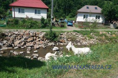 Naše Slovensko s dětmi ve věku 9 a 26 měsíců, část 2.