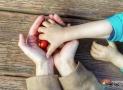 DPČ, DPP, OSVČ, autorský honorář asmlouva odílo při rodičovské dovolené: Včem je rozdíl aco se vyplatí?